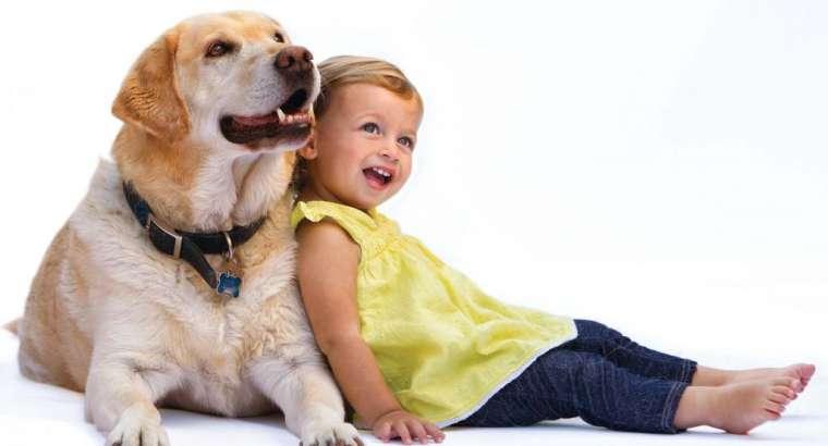 Femijet dhe Qente!Si te kene nje komunikim te shendetshem.